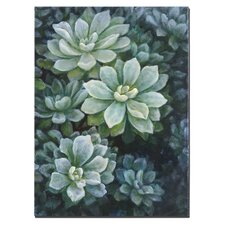 Succulents Floral Wall Art