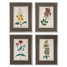 Floral Varieties 4 Piece Framed Painting Print Set