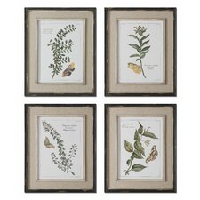 4 Piece Butterfly Plants Framed Wall Art Set