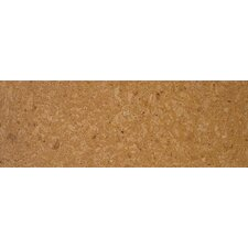 """Assortment 1.06"""" x 3.5"""" Stair Nose in Natural"""