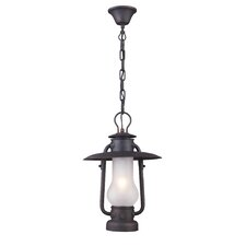 Chapman 1 Light Outdoor Pendant