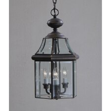 Embassy Row 3 Light Outdoor Ceiling Pendant