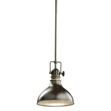 Fresnel 1 Light Mini Pendant