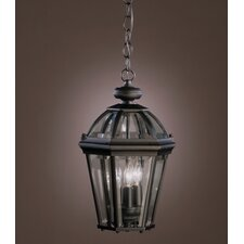 Trenton 3 Light Outdoor Pendant