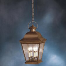 Mount Vernon 4 Light Outdoor Ceiling Pendant