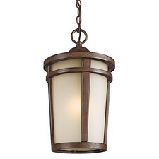 Atwood 1 Light Outdoor Hanging Lantern