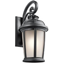 Ralston 1 Light Outdoor Wall Lantern