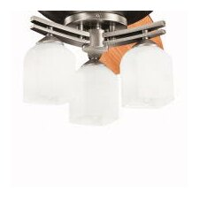 Brinbourne Three Light Ceiling Fan Light Kit