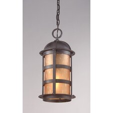 Aspen 1 Light Hanging Lantern