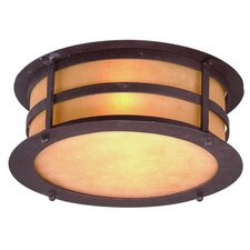 <strong>Troy Lighting</strong> Aspen 2 Light Flush Mount