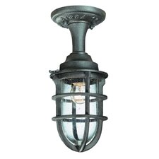 <strong>Troy Lighting</strong> Wilmington 1 light Flush Mount