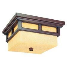 Cottage Grove 2 Light Flush Mount
