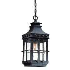 Dover 1 Light Hanging Lantern