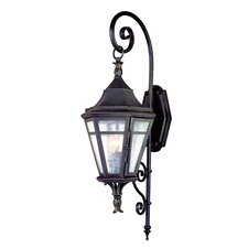 <strong>Troy Lighting</strong> Morgan Hill Wall Lantern