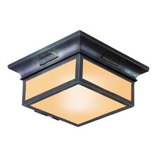 Newton 2 Light Flush Mount