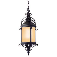 Pamplona 1 Light Outdoor Hanging Lantern