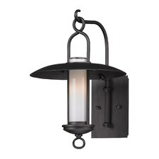 <strong>Troy Lighting</strong> Carmel 1 Light Outdoor Wall Light
