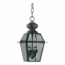 <strong>Quorum</strong> Duvall 2 Light Hanging Lantern