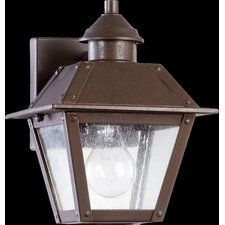 Emile 1 Light Outdoor Wall Lantern