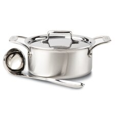 d5 Brushed Stainless Steel 3-qt. Soup Pot with Lid and Ladle