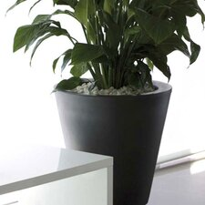Aigua Cono Round Flower Pot Planter with Self-Watering