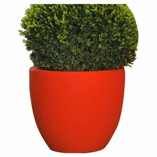 Cuenco Fang Round Pot Planter