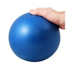 Professional Core Training Ball