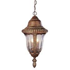 Outdoor 4 Light Hanging Lantern