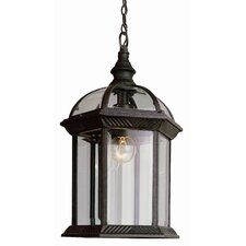 Outdoor 1 Light Hanging Lantern