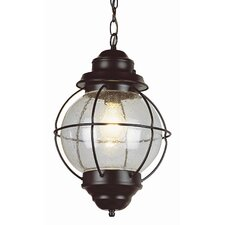 Outdoor Onion 1 Light Hanging Lantern