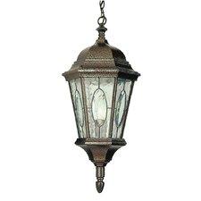 1 Light Outdoor Medium Hanging Lantern