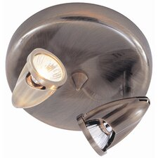Modern Track Lights 2 Light Semi Flush Mount