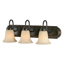 Brookfield 3 Light Bath Vanity Light