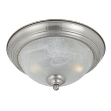 Value Series 290 2 Light Flush Mount