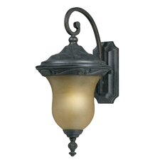 <strong>Triarch Lighting</strong> 1 Light Wall Lantern