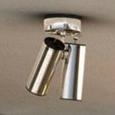 Tub 2 Light Flush Mount