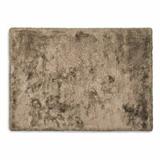 Shiny Taupe Area Rug
