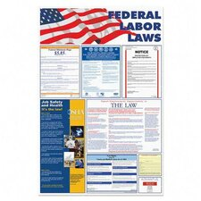 "<strong>Advantus Corp.</strong> Federal Labor Law Poster, 24""x36"", Red/Blue/Black"