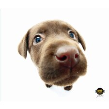 Chocolate Lab Mouse Pad