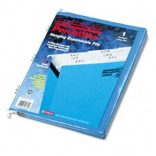 "3 1/2"" Expansion Hanging File, Tabs and Labels, Letter, Nine Sections"