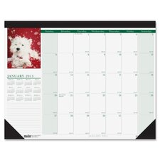 Earthscapes Puppies Monthly Desk Pad Calendar, 22 x 17, 2012