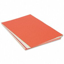 Assorted Colors Tagboard, 100/Pack