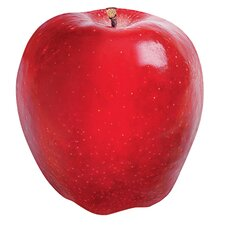 <strong>Trend Enterprises</strong> Classic Accents Red Apple Discovery