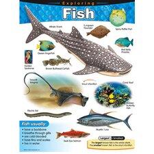 Chart Exploring Fish Gr 1-5