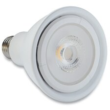 75W Halogen Light Bulb