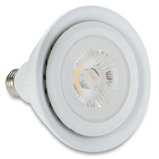 100W Halogen Light Bulb
