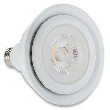 100W Halogen Light Bulb