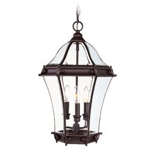 Fleur De Lis  Outdoor Hanging Lantern in Bronze