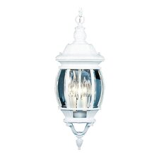 Frontenac  Outdoor Hanging Lantern in White