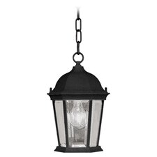 Hamilton 1 Light Outdoor Hanging Lantern